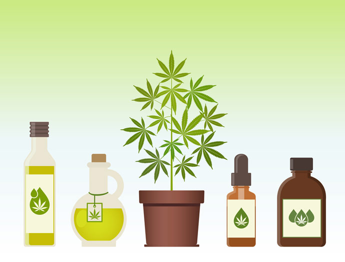 Cannabis Aktien